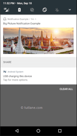 Android Big Picture Style Notifications Example Result