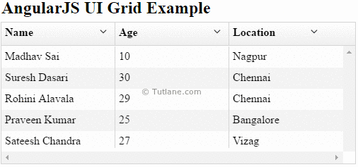 Angularjs ui grid example result or output