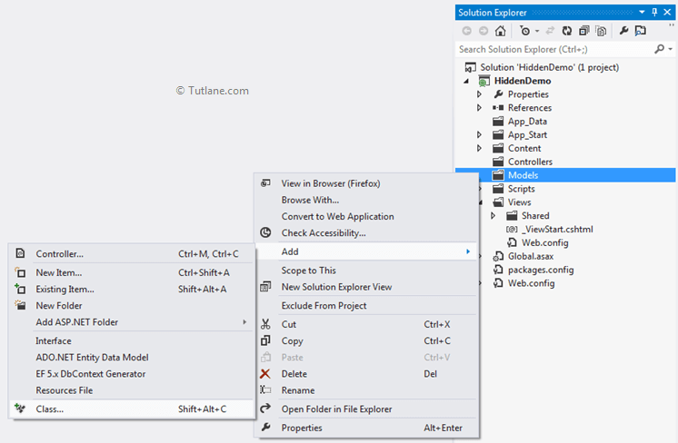 Create or Use Hidden Fields in Asp Net MVC with HTML Helpers Example