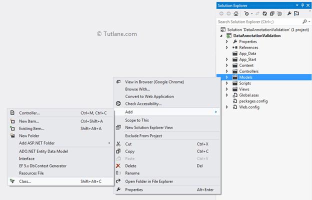 Create new model in data annotation application in asp.net mvc application