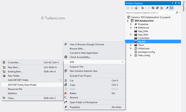 Adding ado.net entity data model in asp.net mvc model first applciation