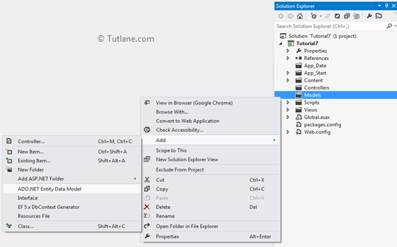 Adding ado.net entity data model in asp.net mvc applciation