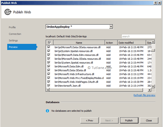 Preview Files which we are going to publish using visual studio