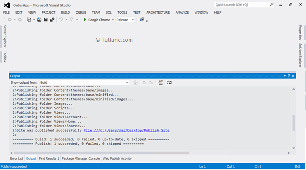 Publishing Website Status using File System in Visual Studio