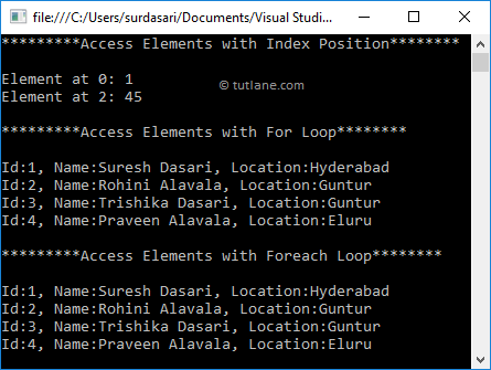 Visual Basic Access List Elements Example Result
