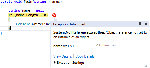 C# NullReferenceException Example Result
