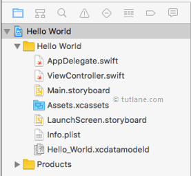 Main Files in iOS Xcode Application Project
