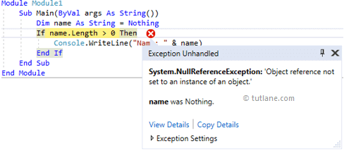 Visual Basic NullReferenceException Example Result